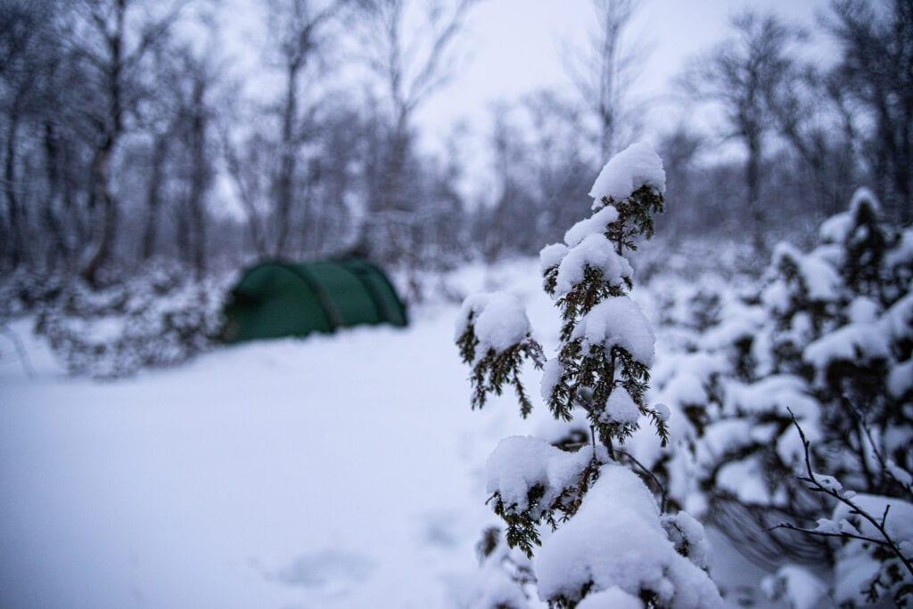 Tälta i snön på vintern så gör man
