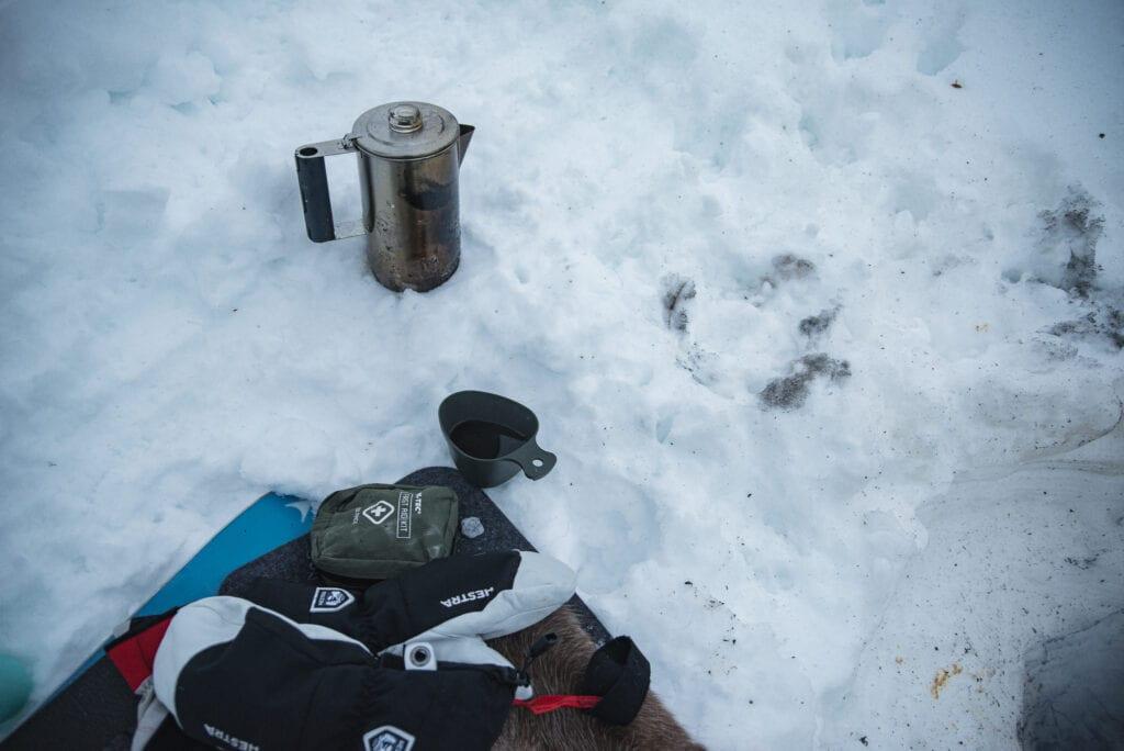 Vantar från Hestra Gloves i snö