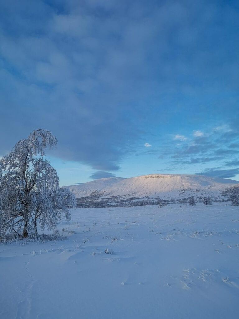 Småhamrarna i Tänndalen på vintern