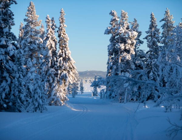Längdskidspår i Hållan, Funäsdalen