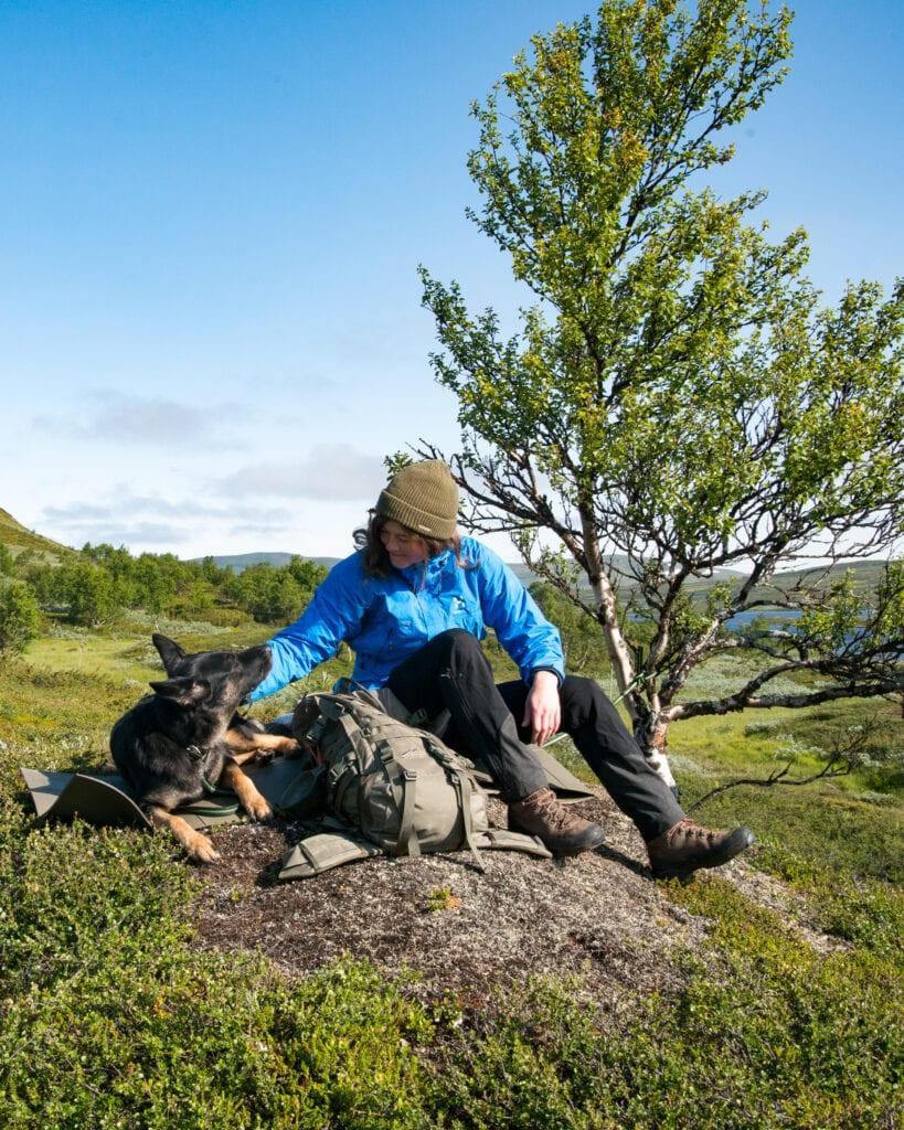 Funäsfjällen vandring med hund