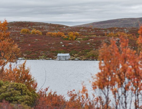 Svansjön i Tänndalen på hösten