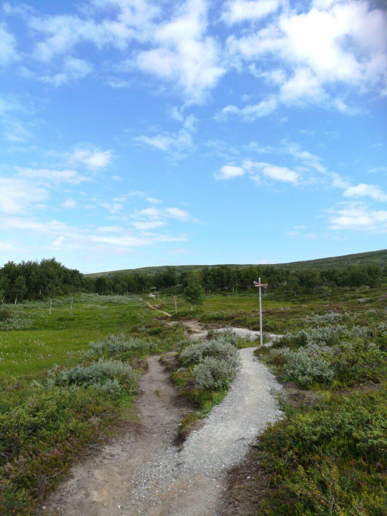 Vandring till Andersborg våffelstuga i Tänndalen