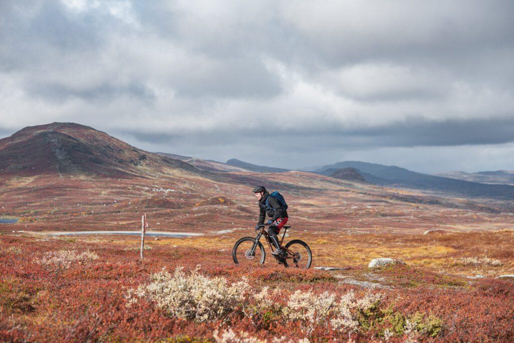 Fjällen på hösten cykla mountainbike